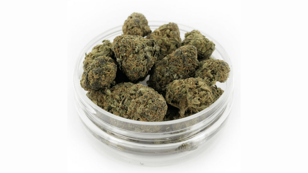 Mango Kush CBD - THC < 0.2%