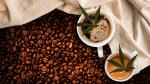 café cbd